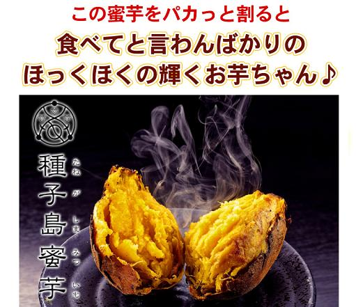 種子島 蜜芋 ほっくほくの安納芋
